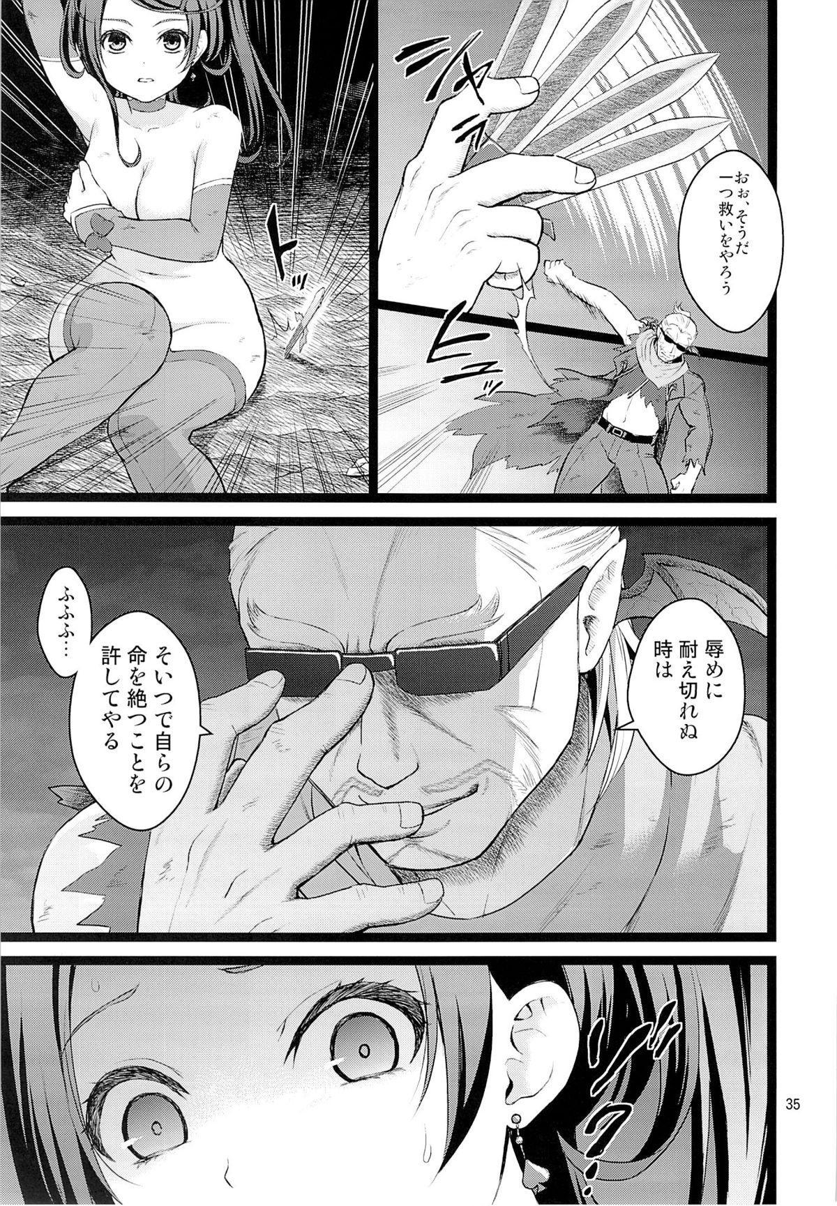 Kanzen Haiboku 33