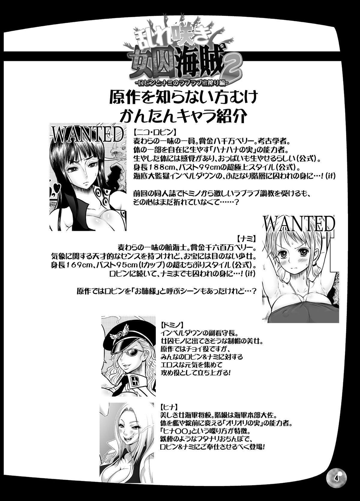 Midarezaki Joshuu Kaizoku 2 2