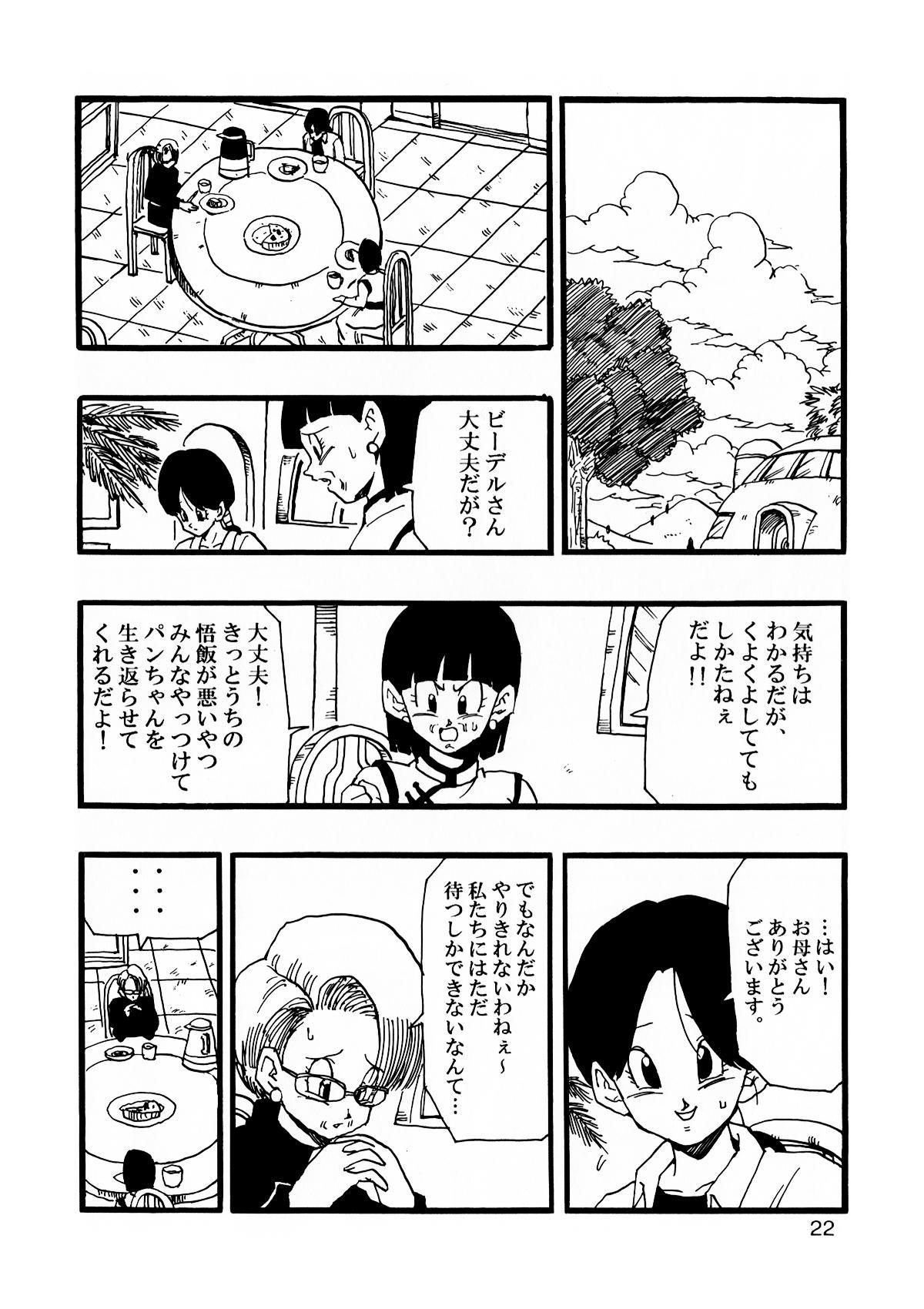 Dragon Ball AF Vol. 12 22