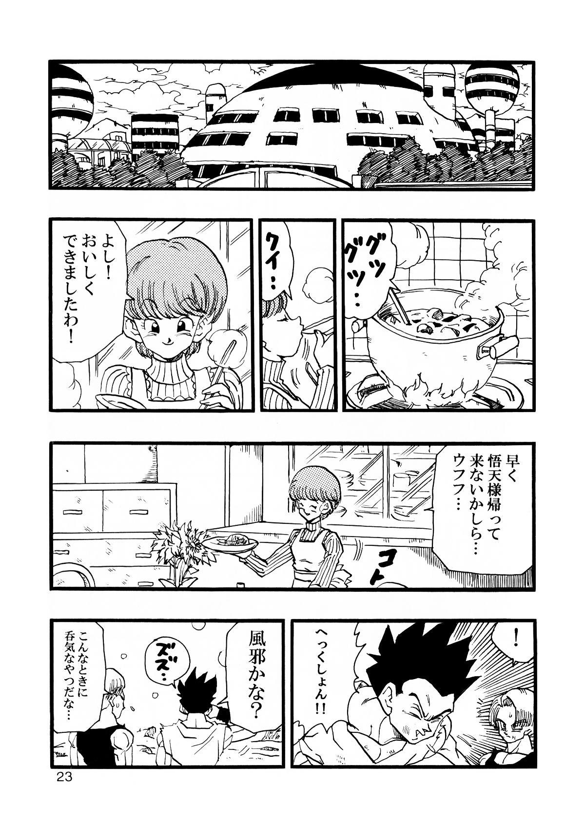 Dragon Ball AF Vol. 12 23