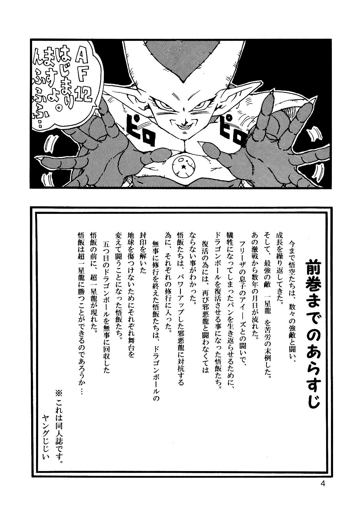 Dragon Ball AF Vol. 12 4