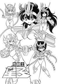 Saint Seiko Kanzenban 3