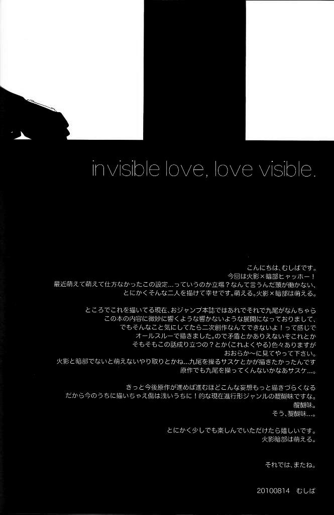 Invisible Love, Love Visible 44