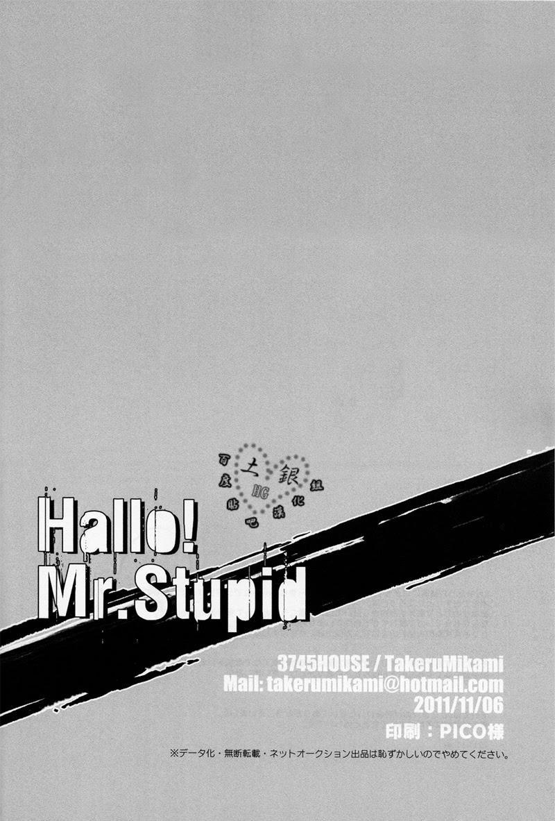 Hallo! Mr.Stupid 32