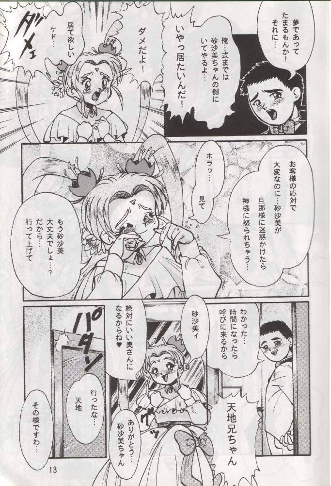 Tenchi Damashii 11