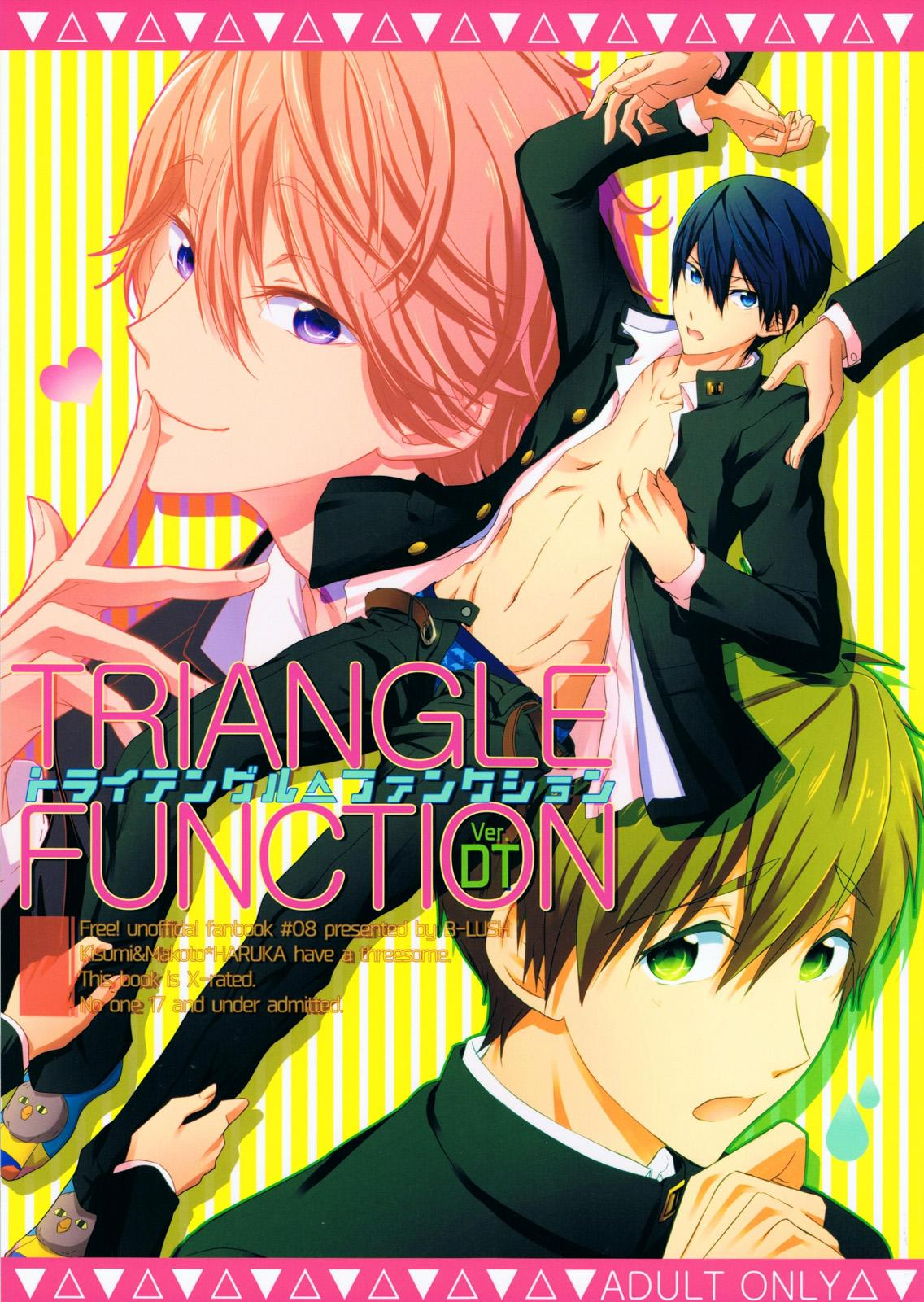 TRIANGLE FUNCTION ver. DT 0