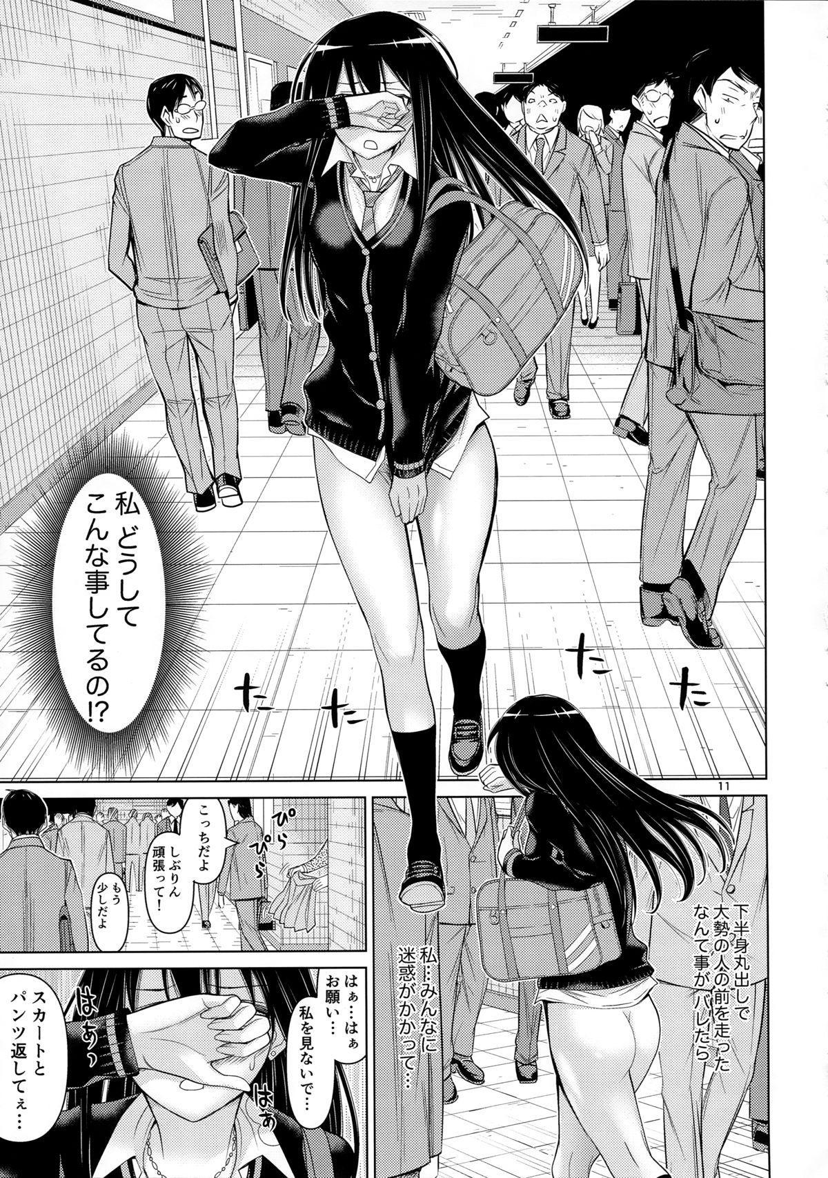 TOKAI to Shiburin 10