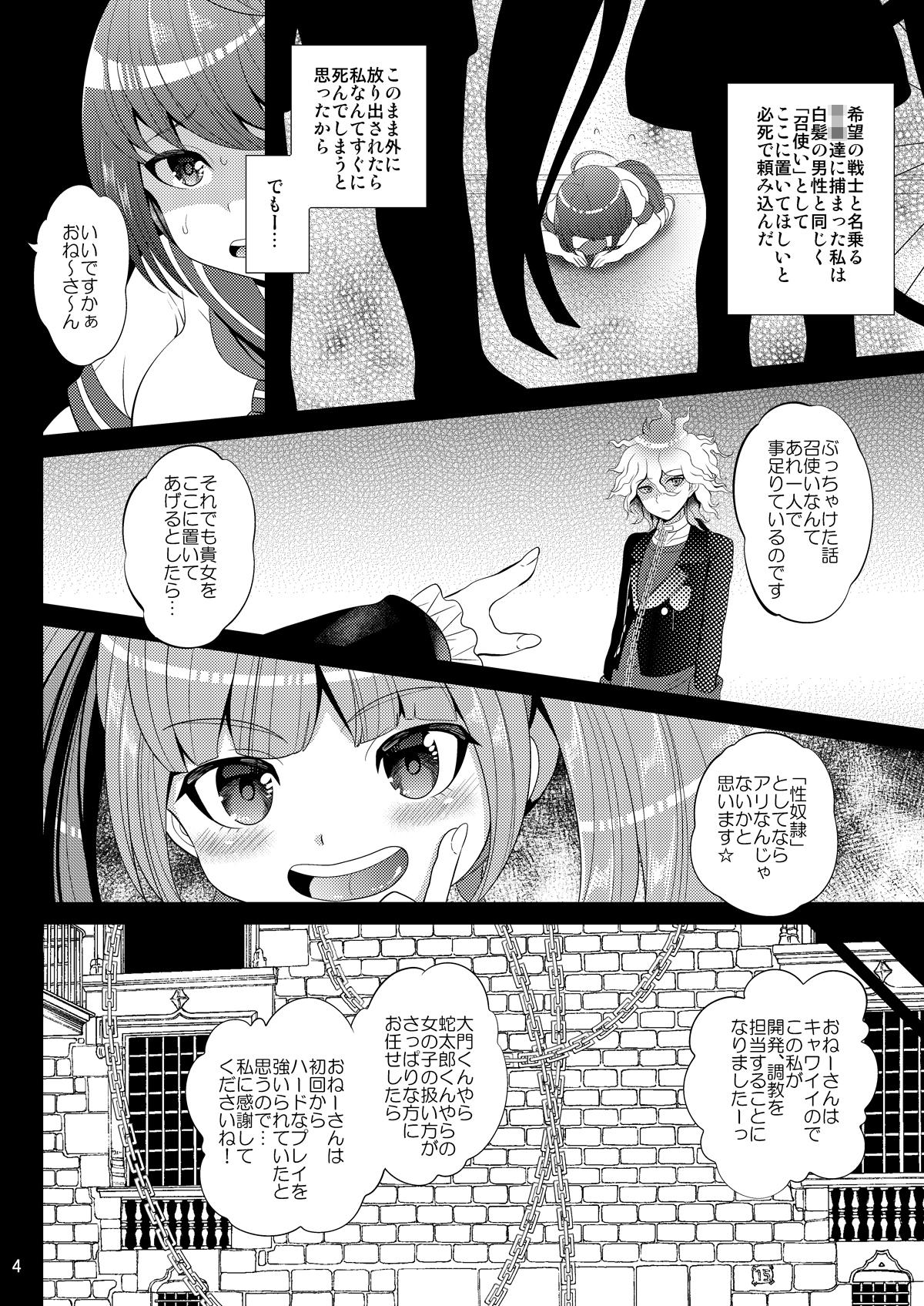 Kibou no Idenshi 3