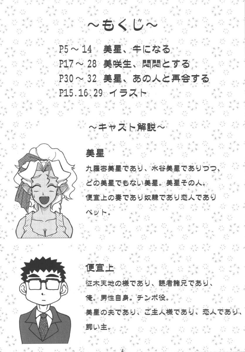 Mihoshi Tsuma 3 3