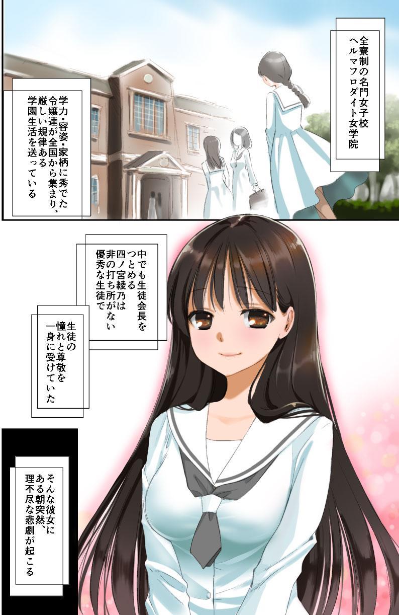 Futanari-chan 1