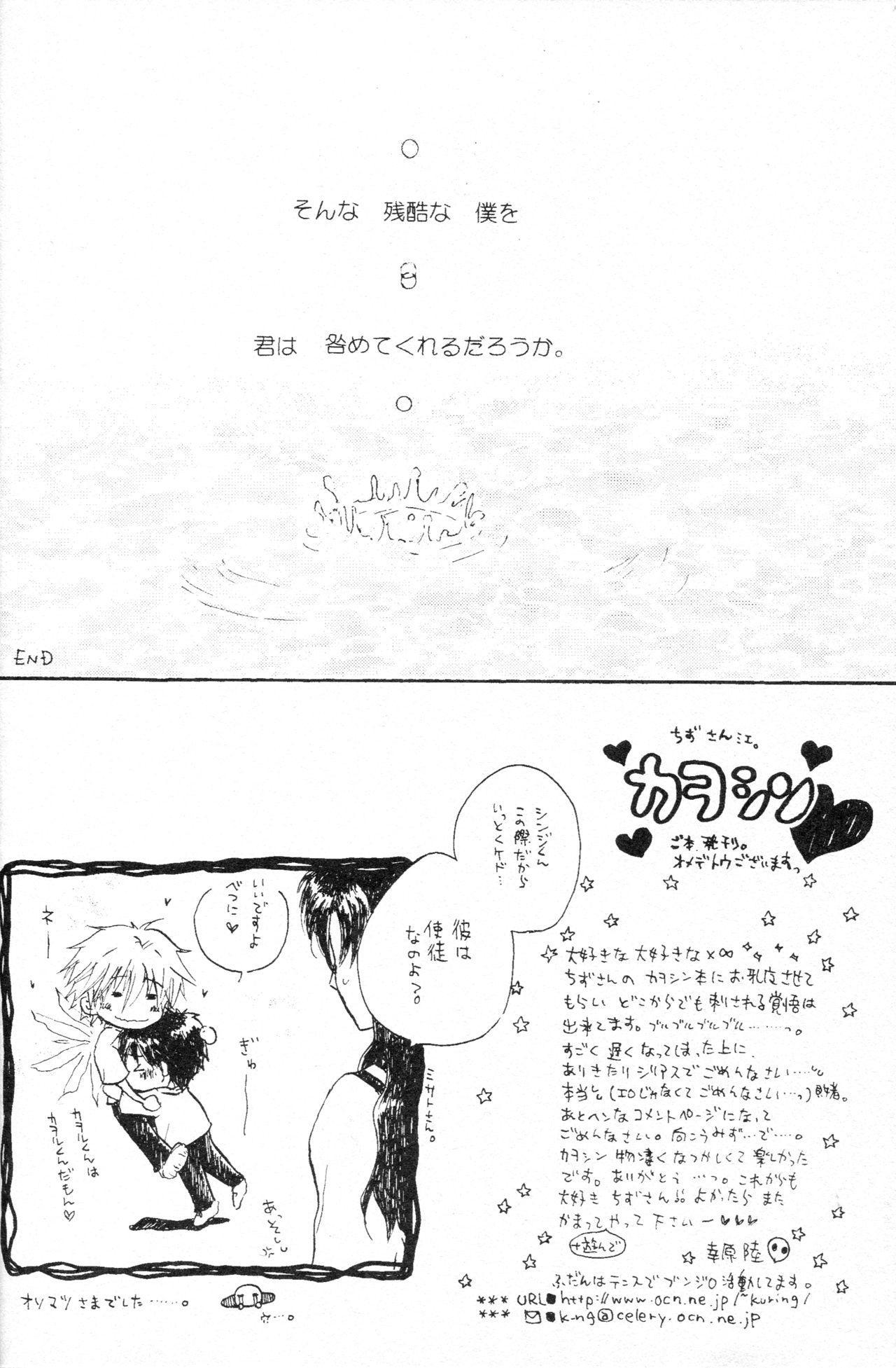 PSP Eva 2 no Susume 24