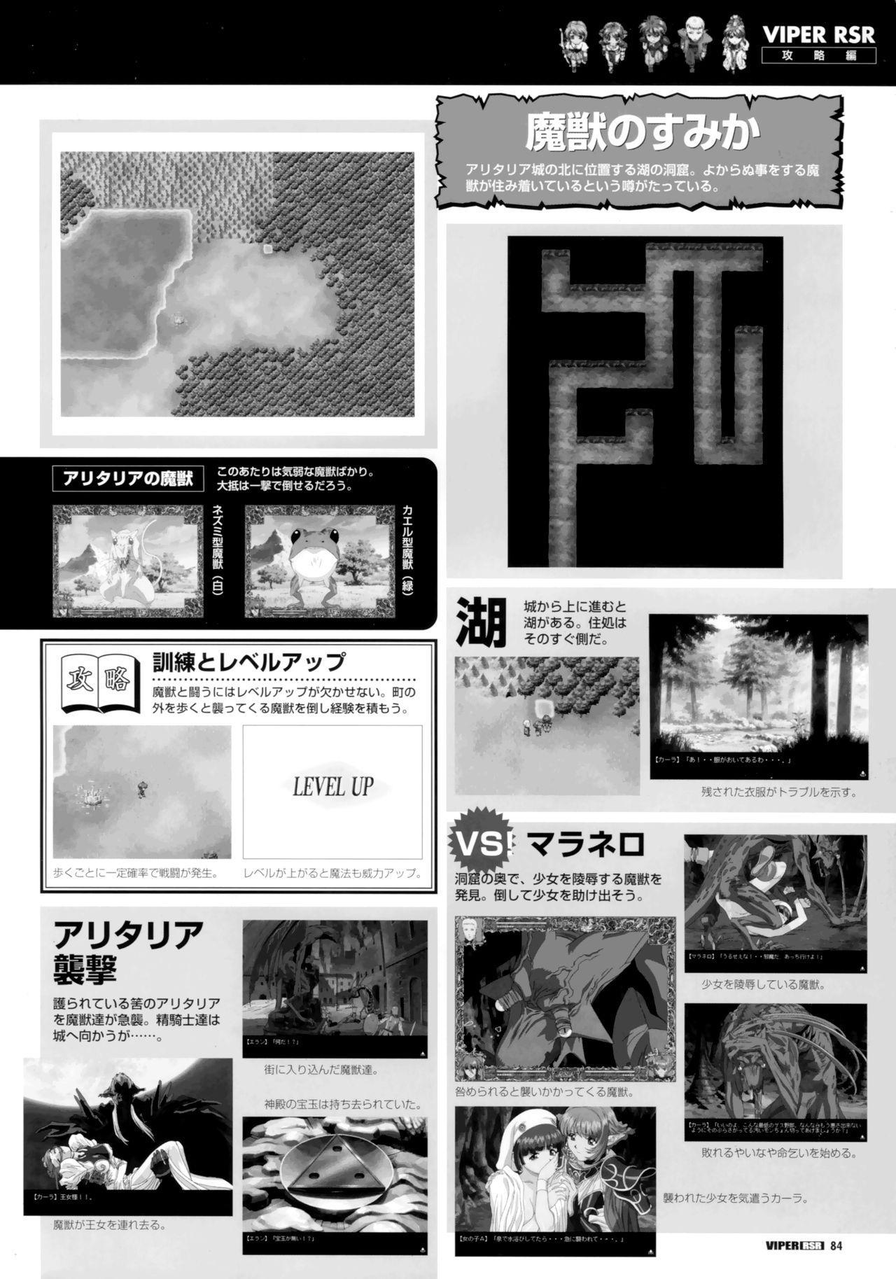 Viper Official Art Book 85