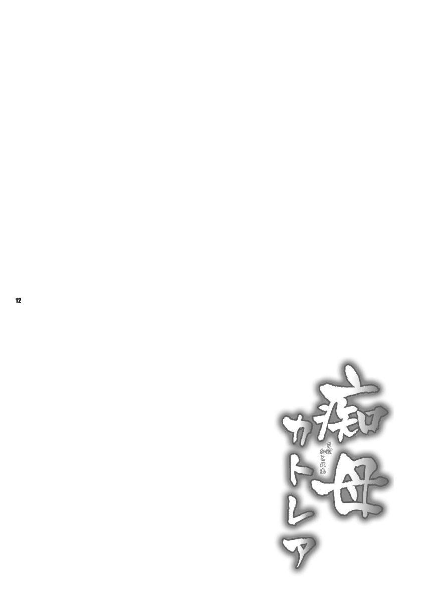 Chibo Cattleya 11