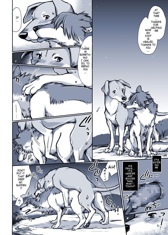 Aru Inu no Baai   A certain dog's situation 5