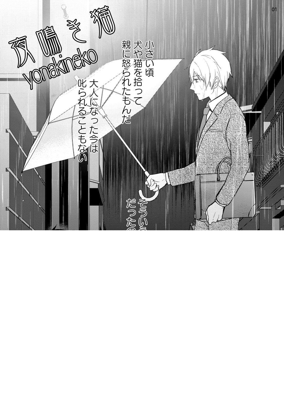 Yonaki Neko 2