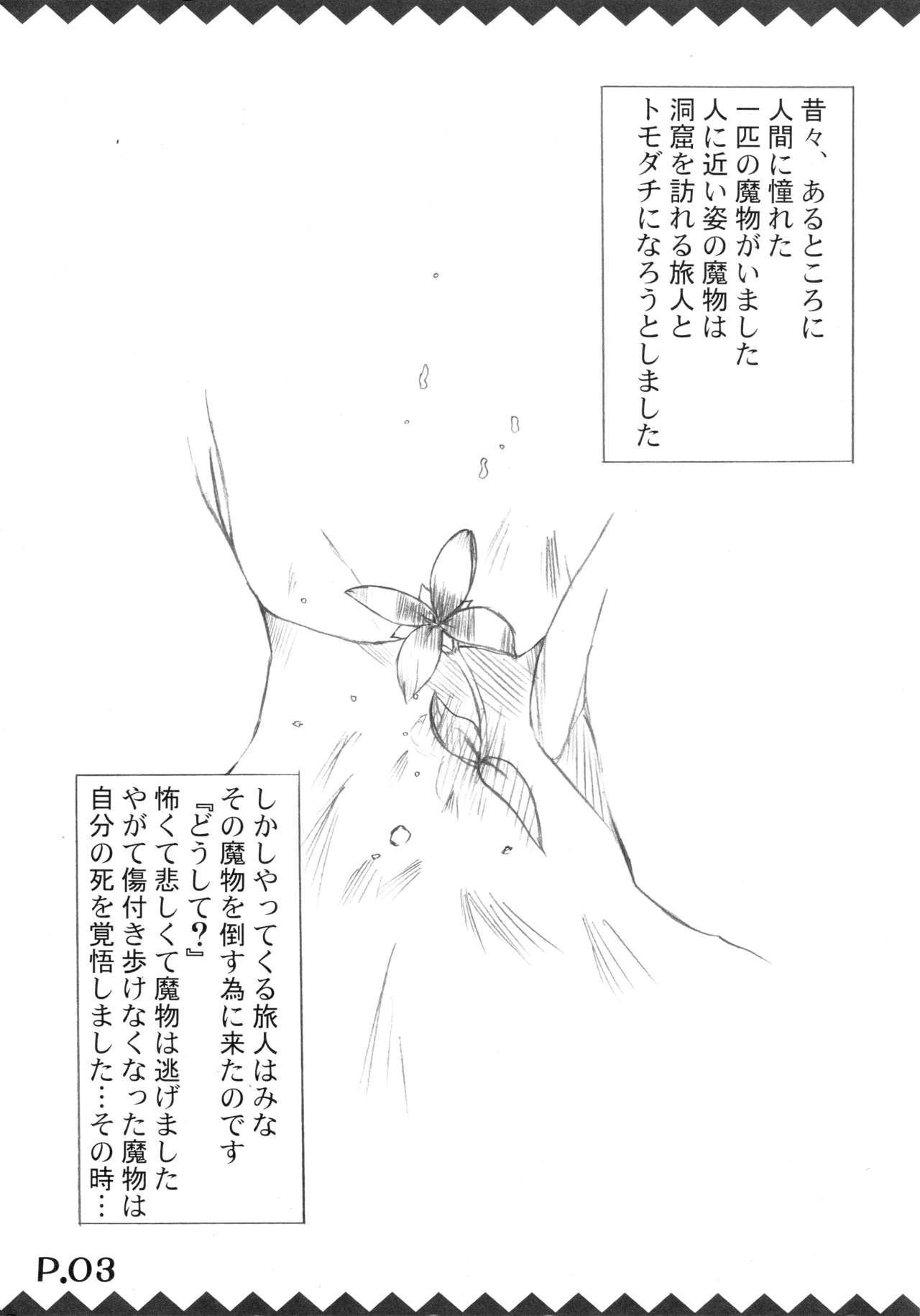 Tsukiyo Hana no Hon 4