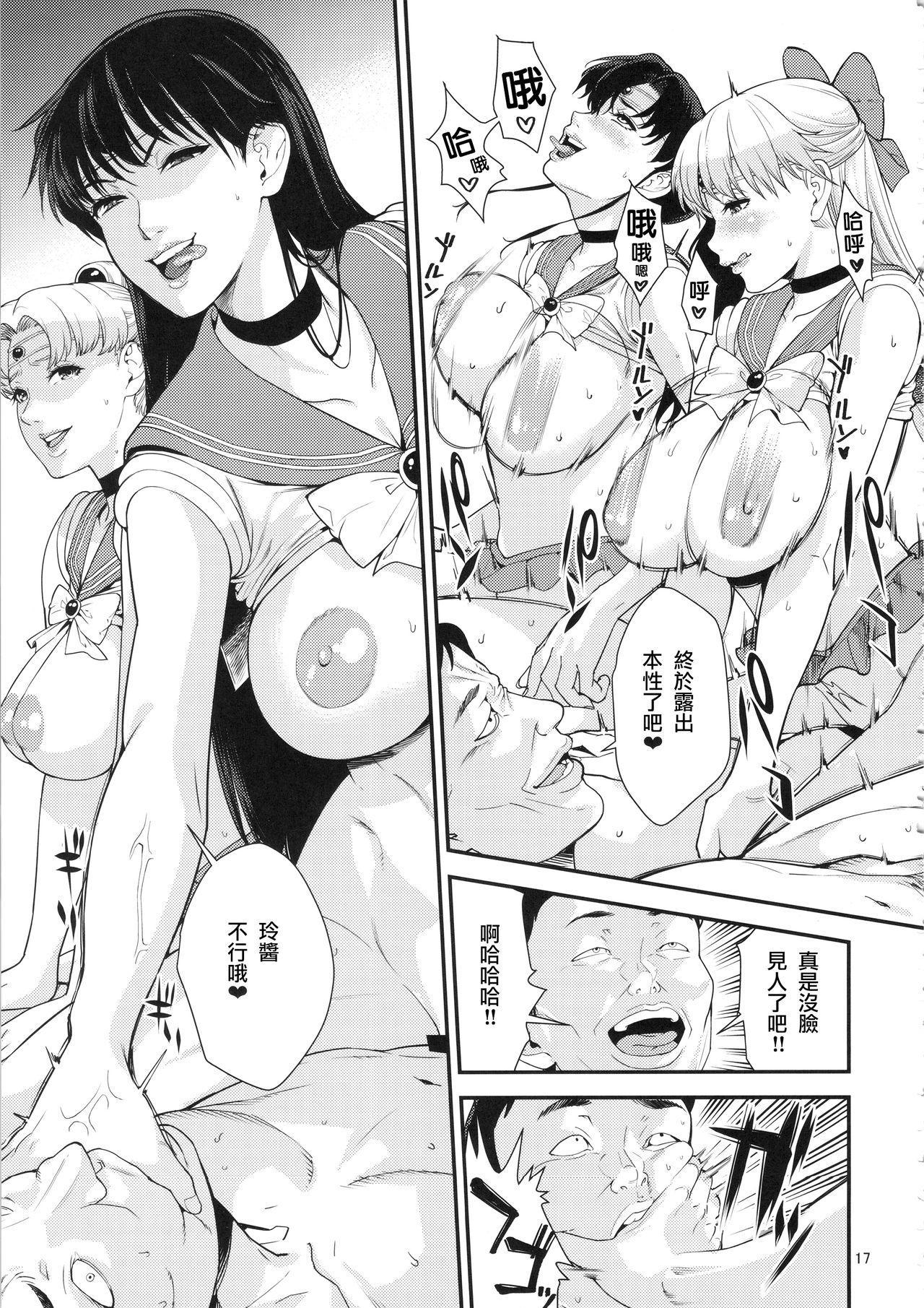 Sailor Moon 15