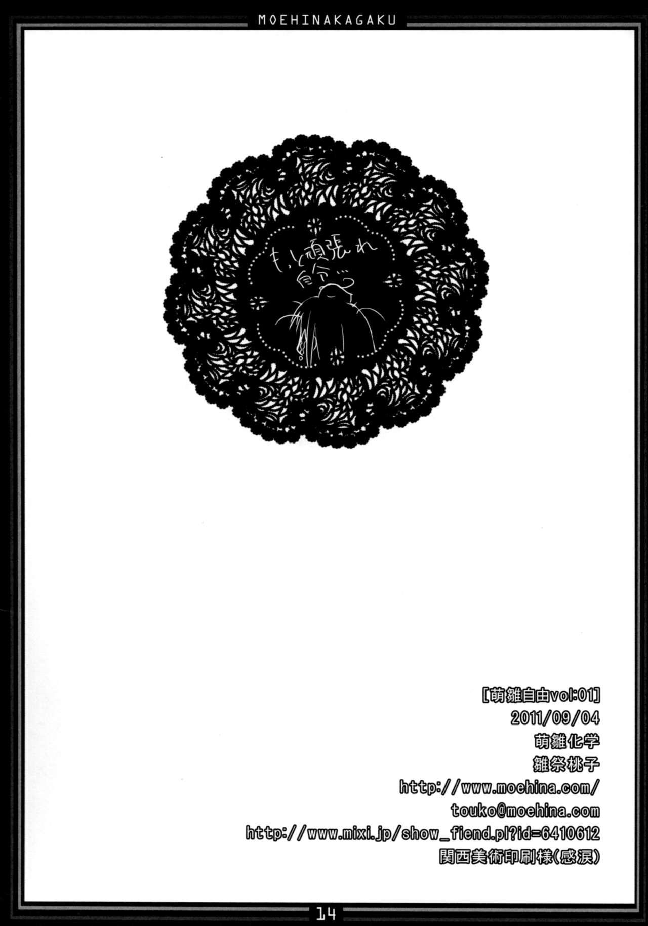 Moehina Jiyuu VOL: 1 12