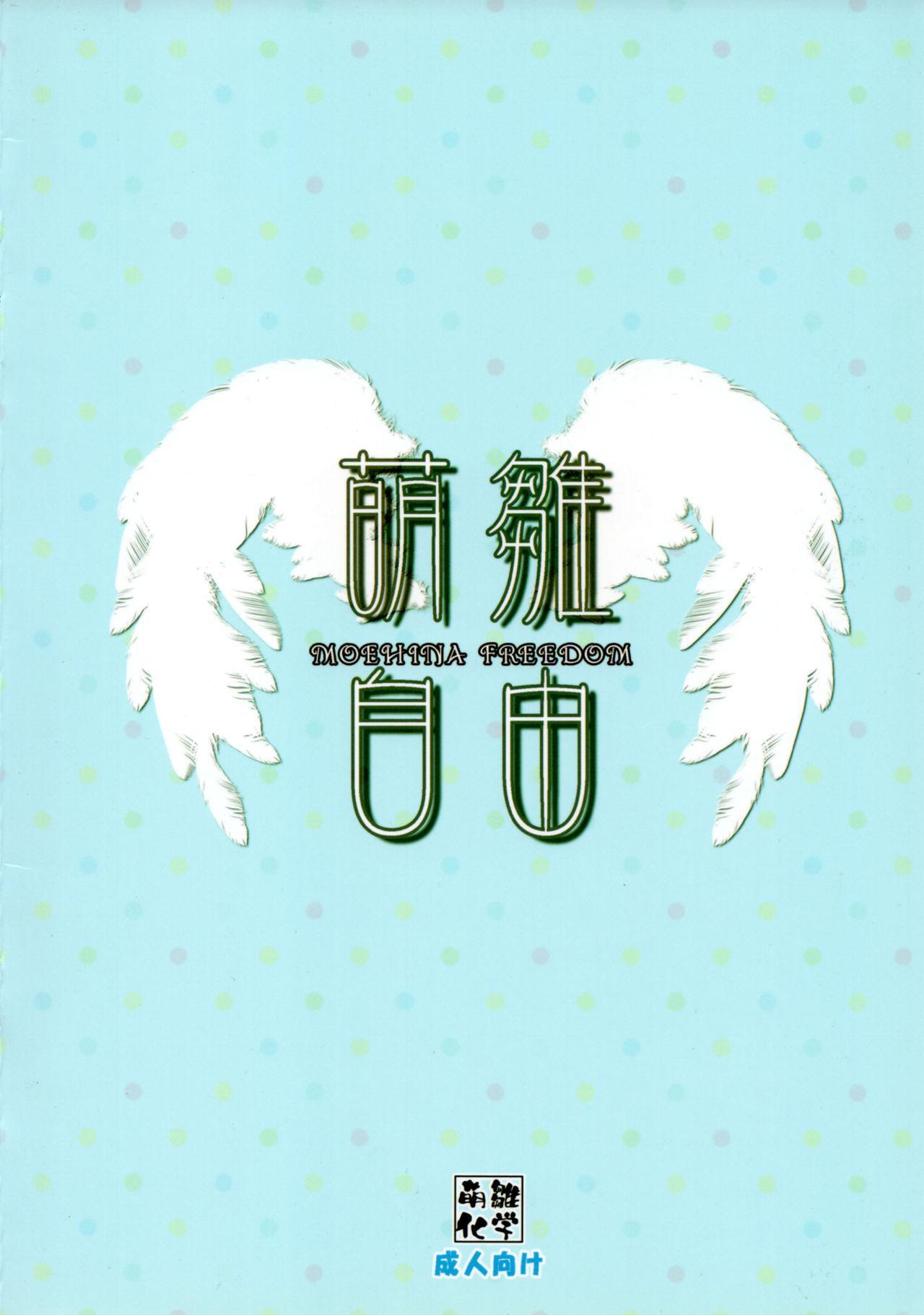 Moehina Jiyuu VOL: 1 13