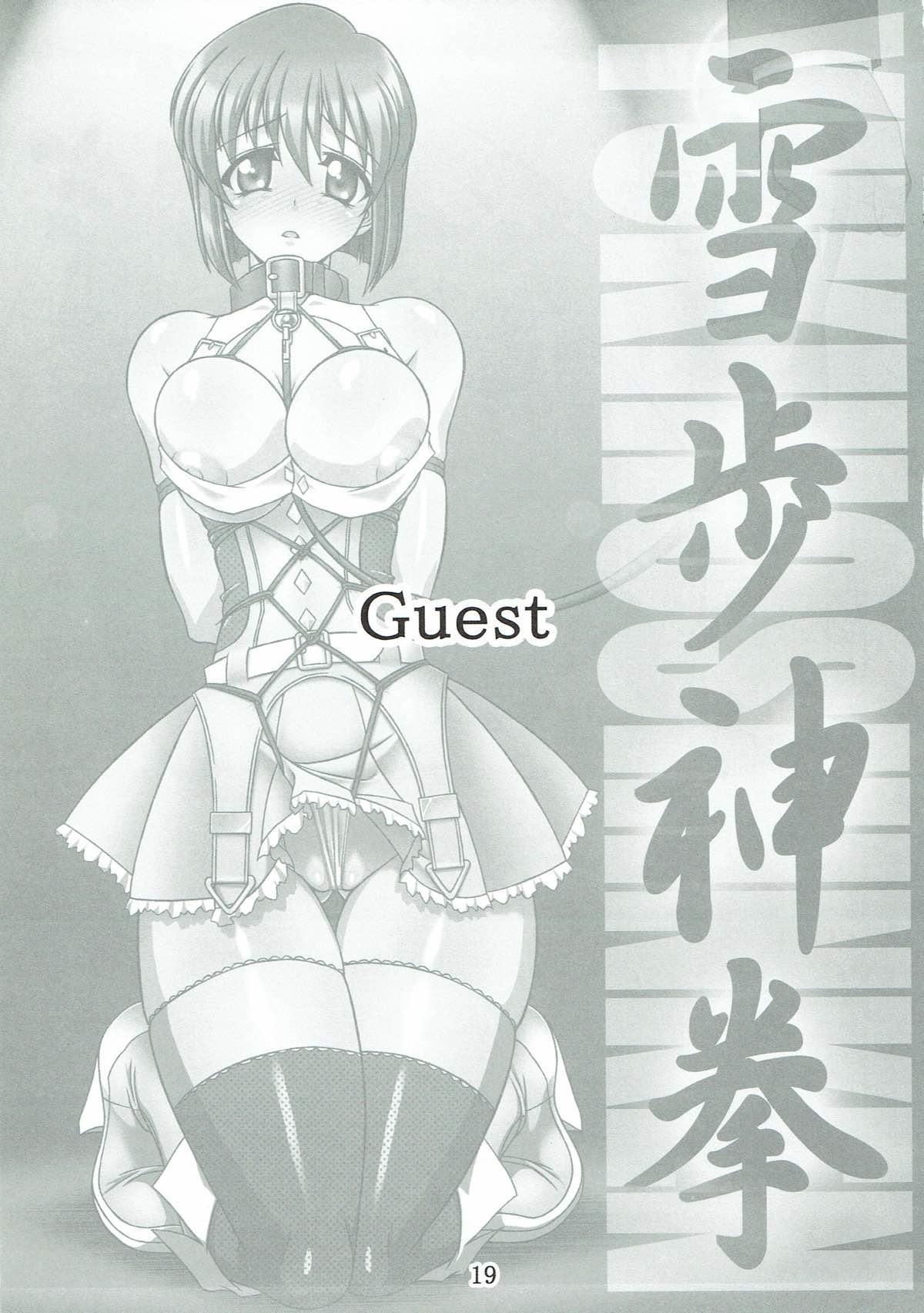Yukiho Shinken 17
