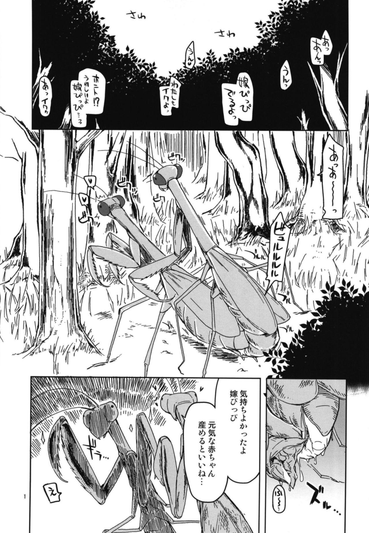Dosukebe Elf no Ishukan Nikki 5 2
