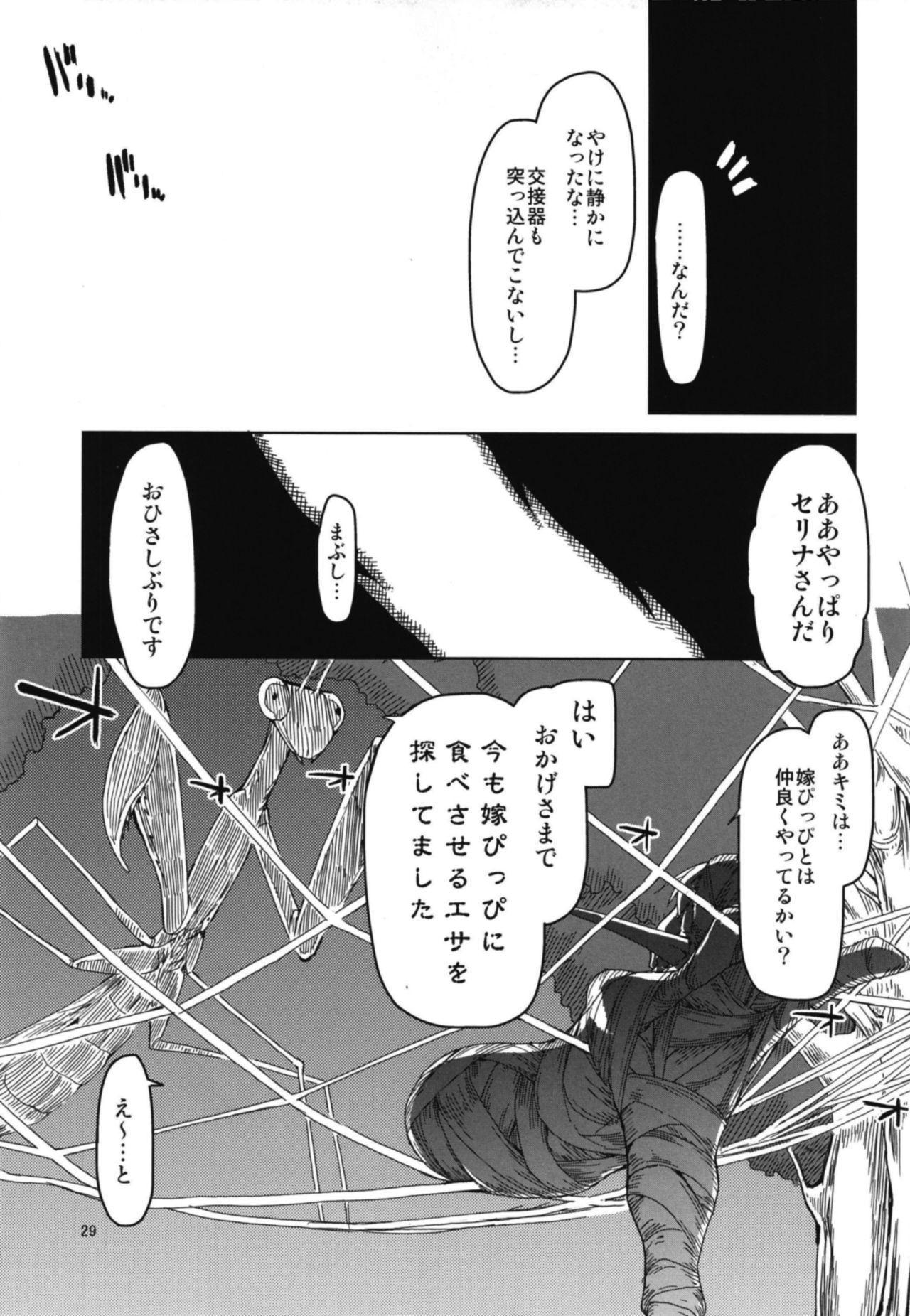 Dosukebe Elf no Ishukan Nikki 5 30