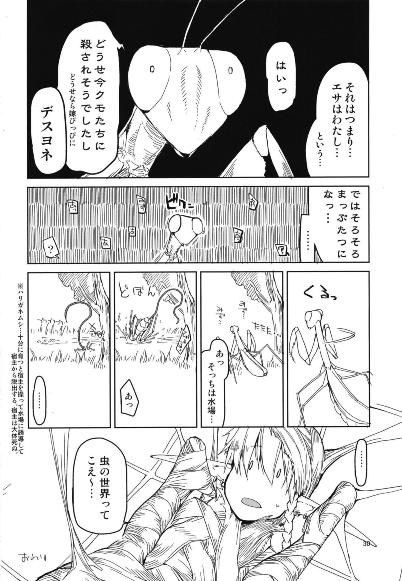Dosukebe Elf no Ishukan Nikki 5 31