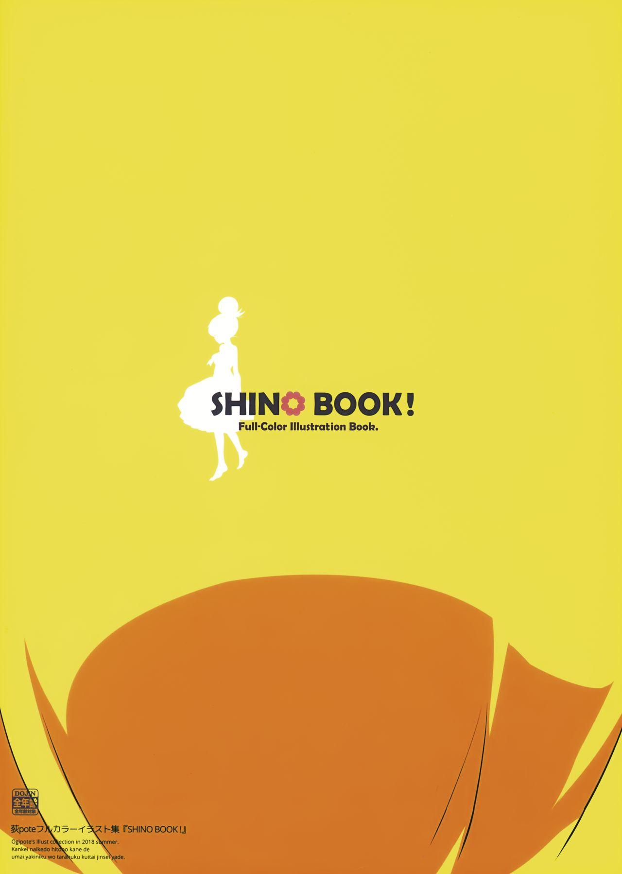 SHINO BOOK! 13