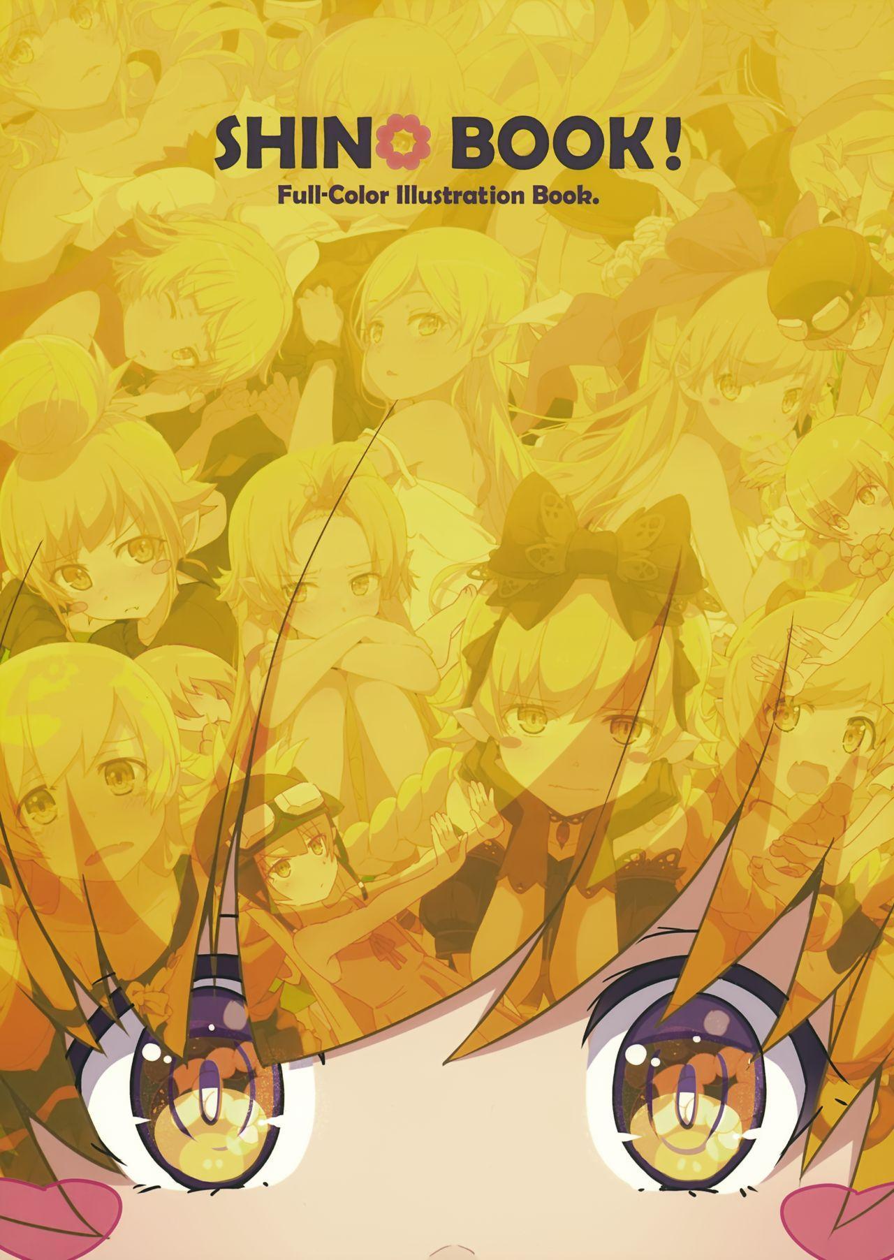 SHINO BOOK! 1