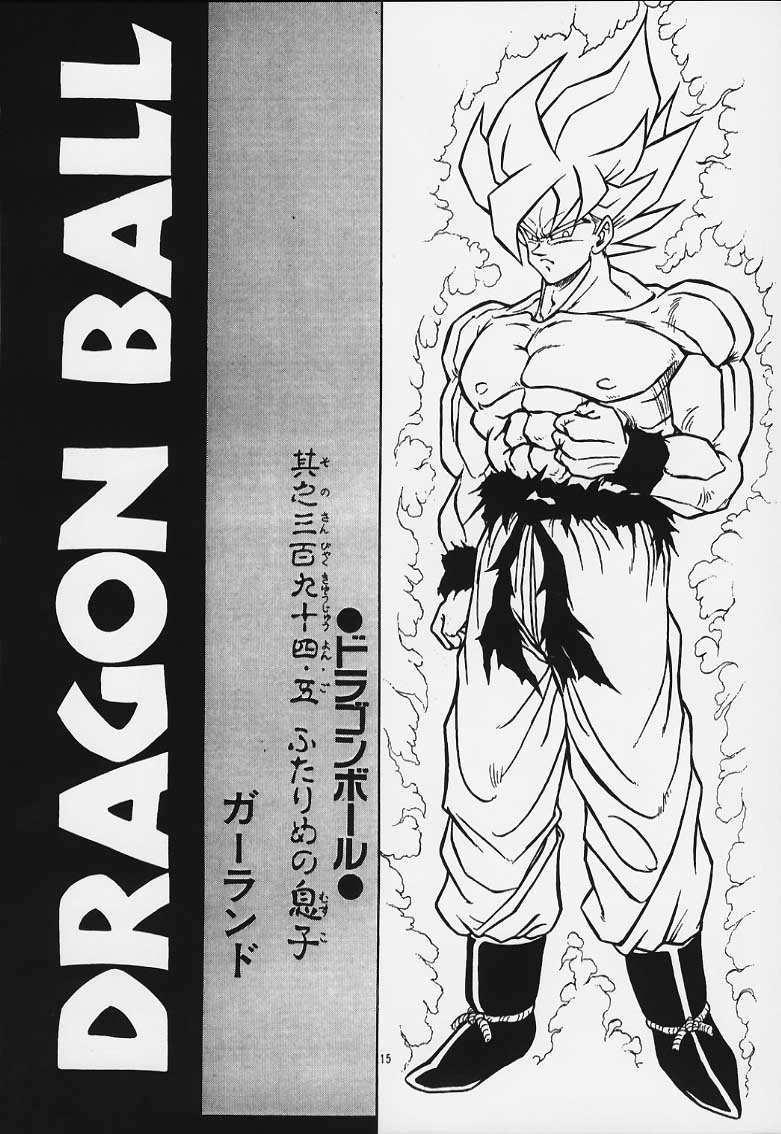 DRAGONBALL H Maki Ichi Ni Saihan 13