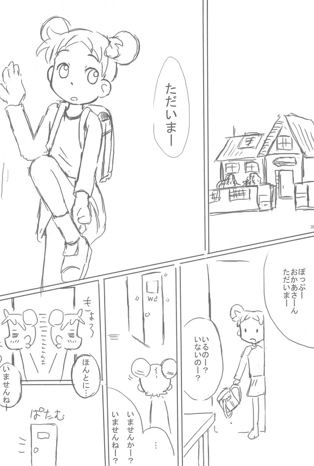 Shimai-bon 27
