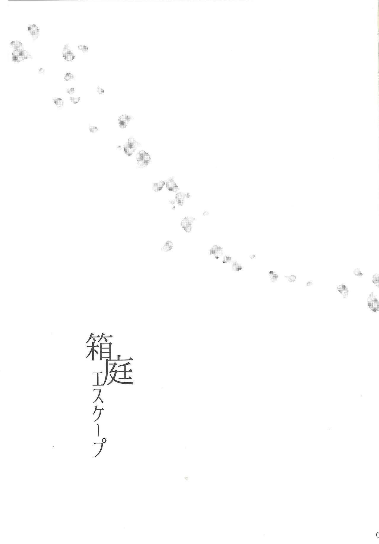 Hakoniwa Escape 1