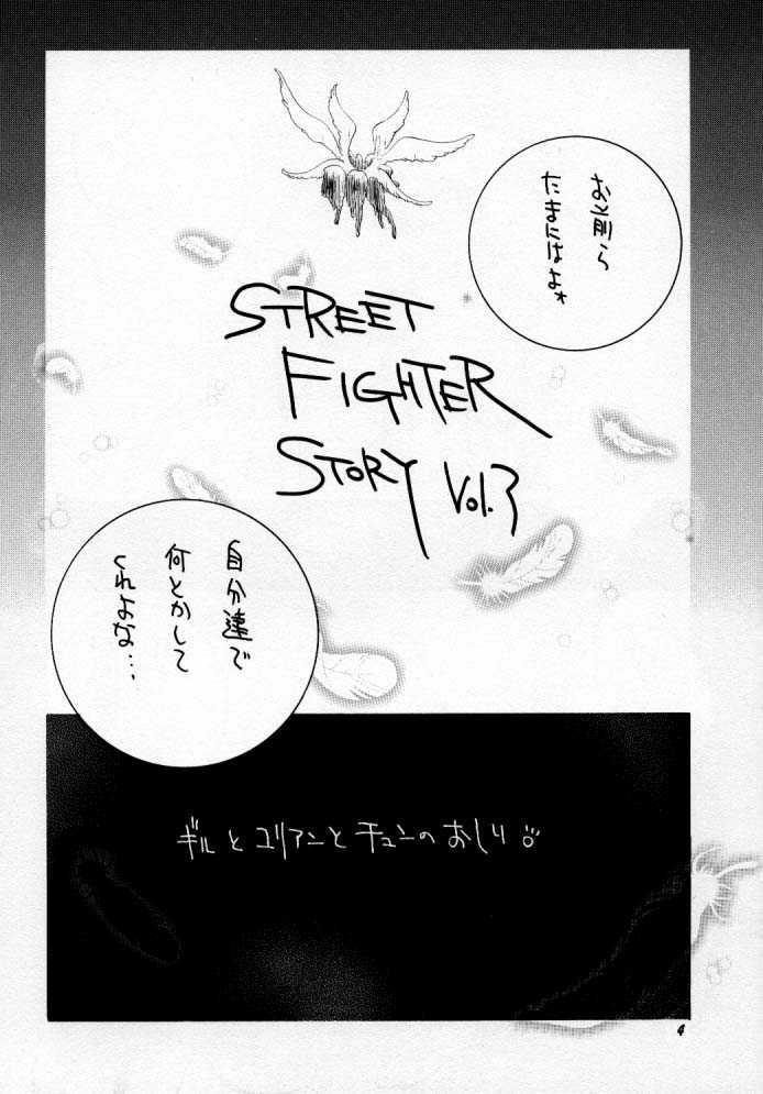 Street Fighter Story 4