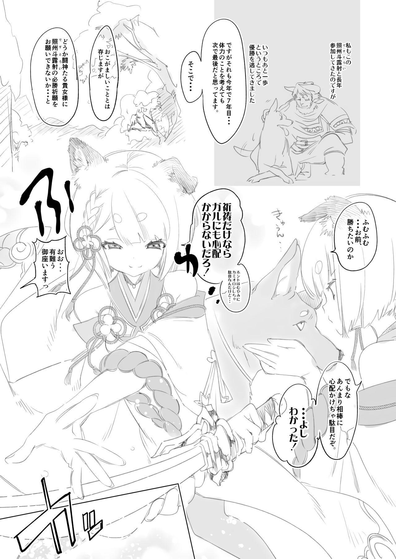 Kamishiki 01 3