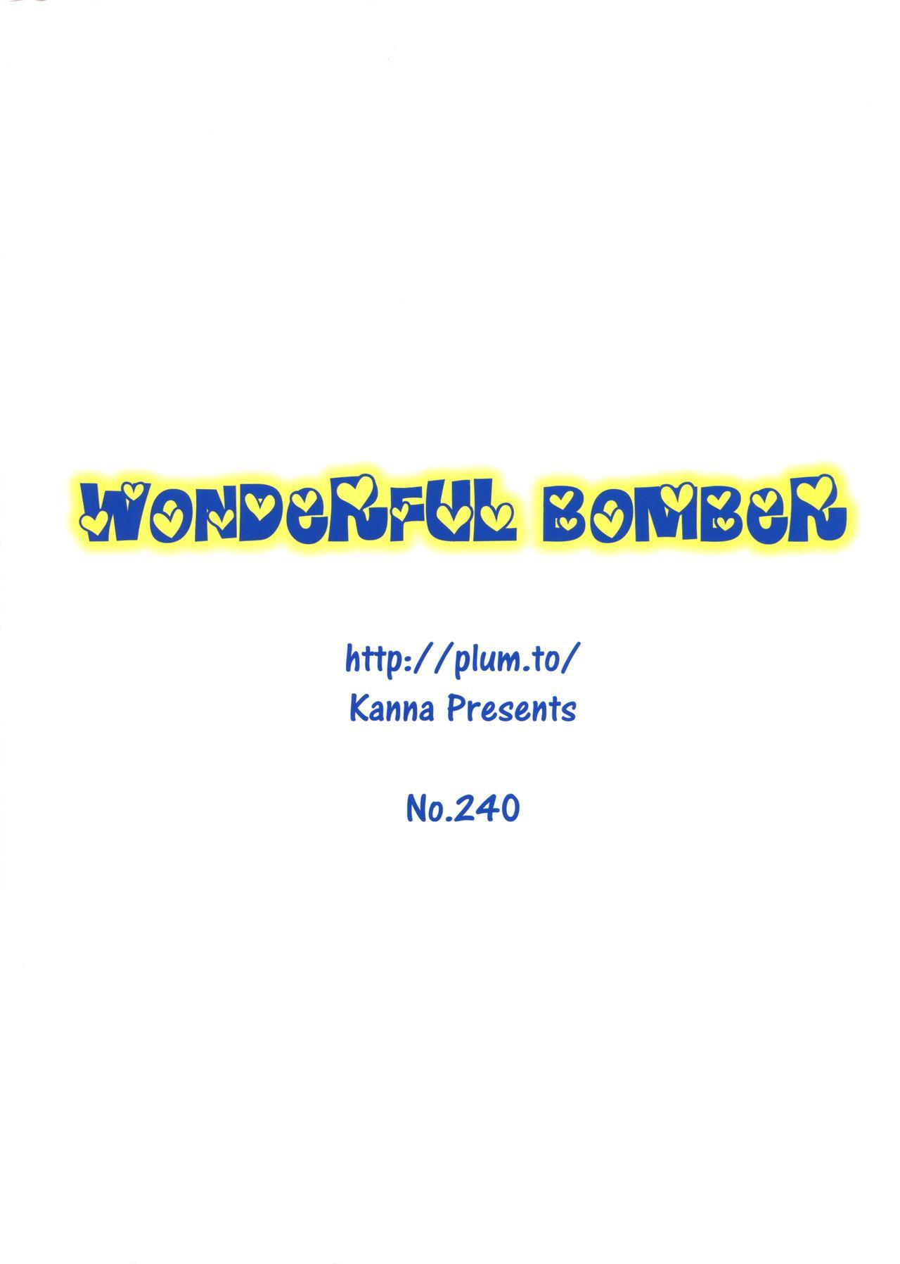 Wonderful Bomber 1