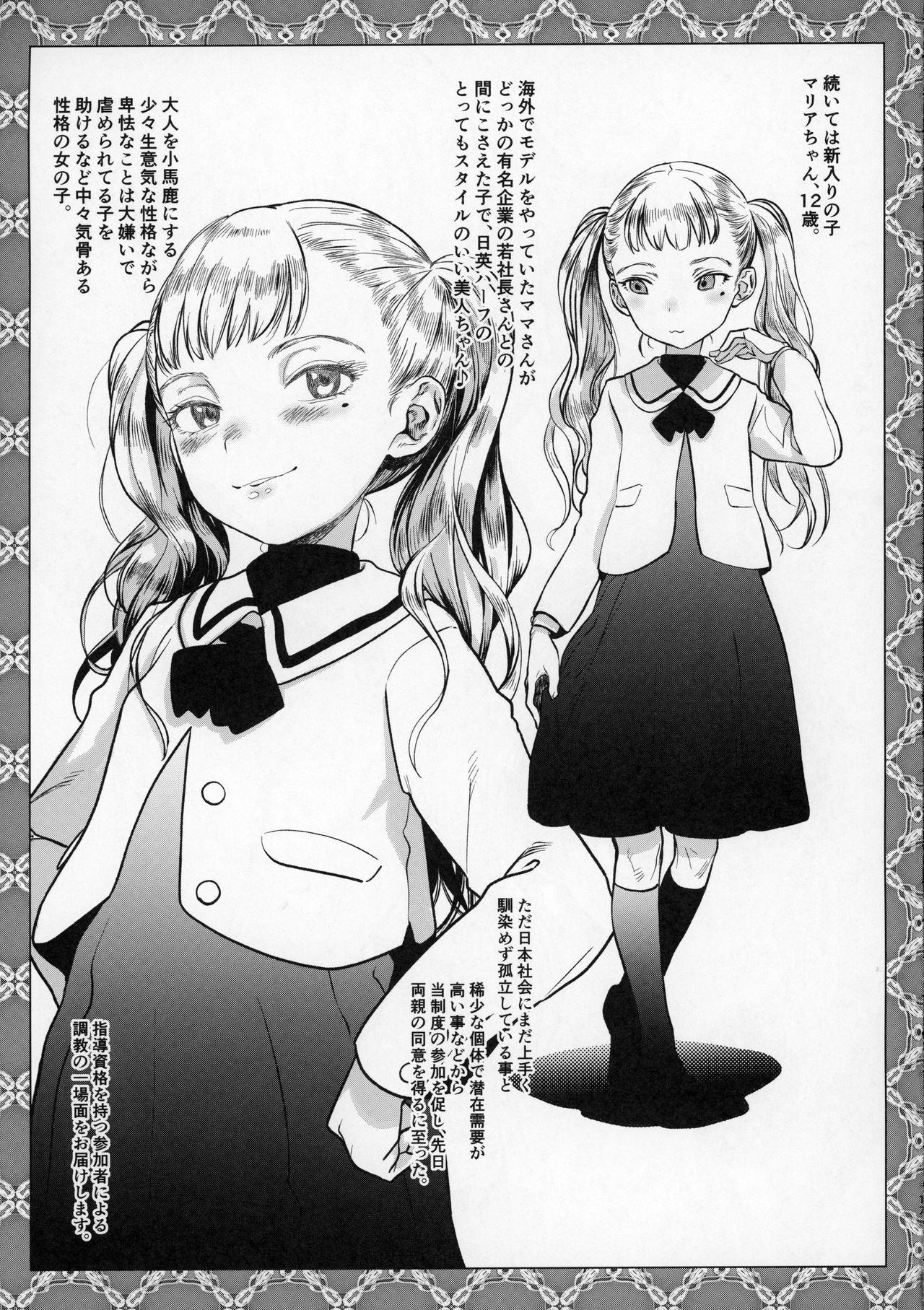 Kinrou Shourei Gohoushi JS Chiiki Kouryuu Seido 11