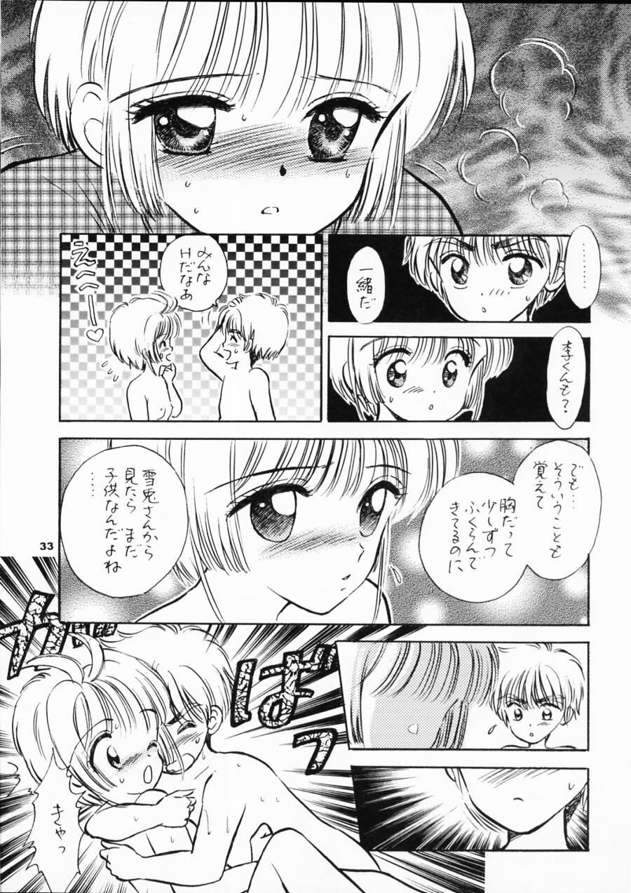 INTRODUCTION 31