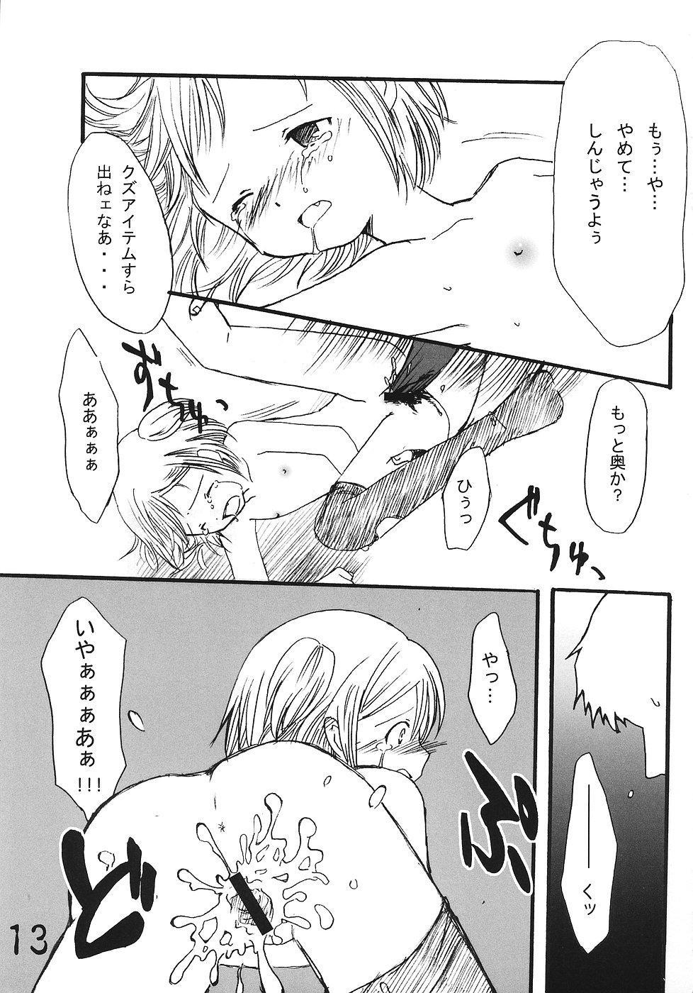 Tsurupeta Kenkyuusho Houkokusho 11