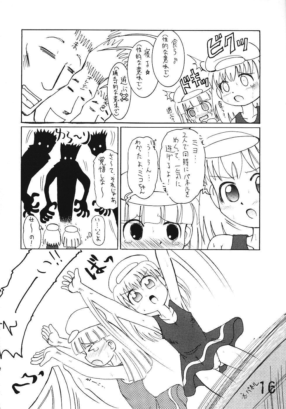 Tsurupeta Kenkyuusho Houkokusho 14