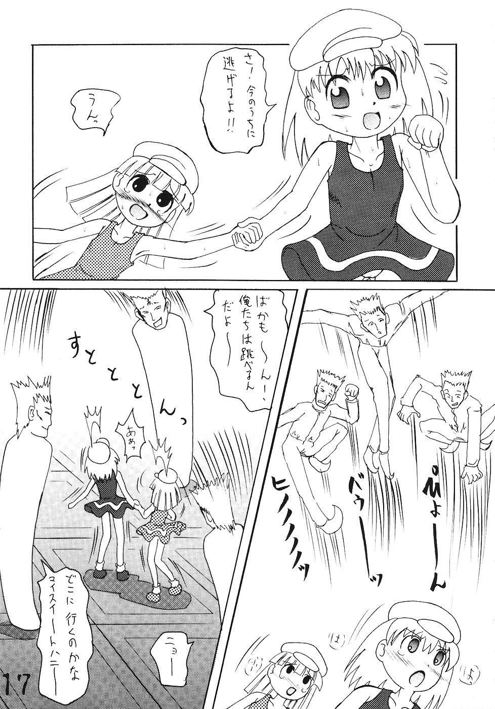 Tsurupeta Kenkyuusho Houkokusho 15