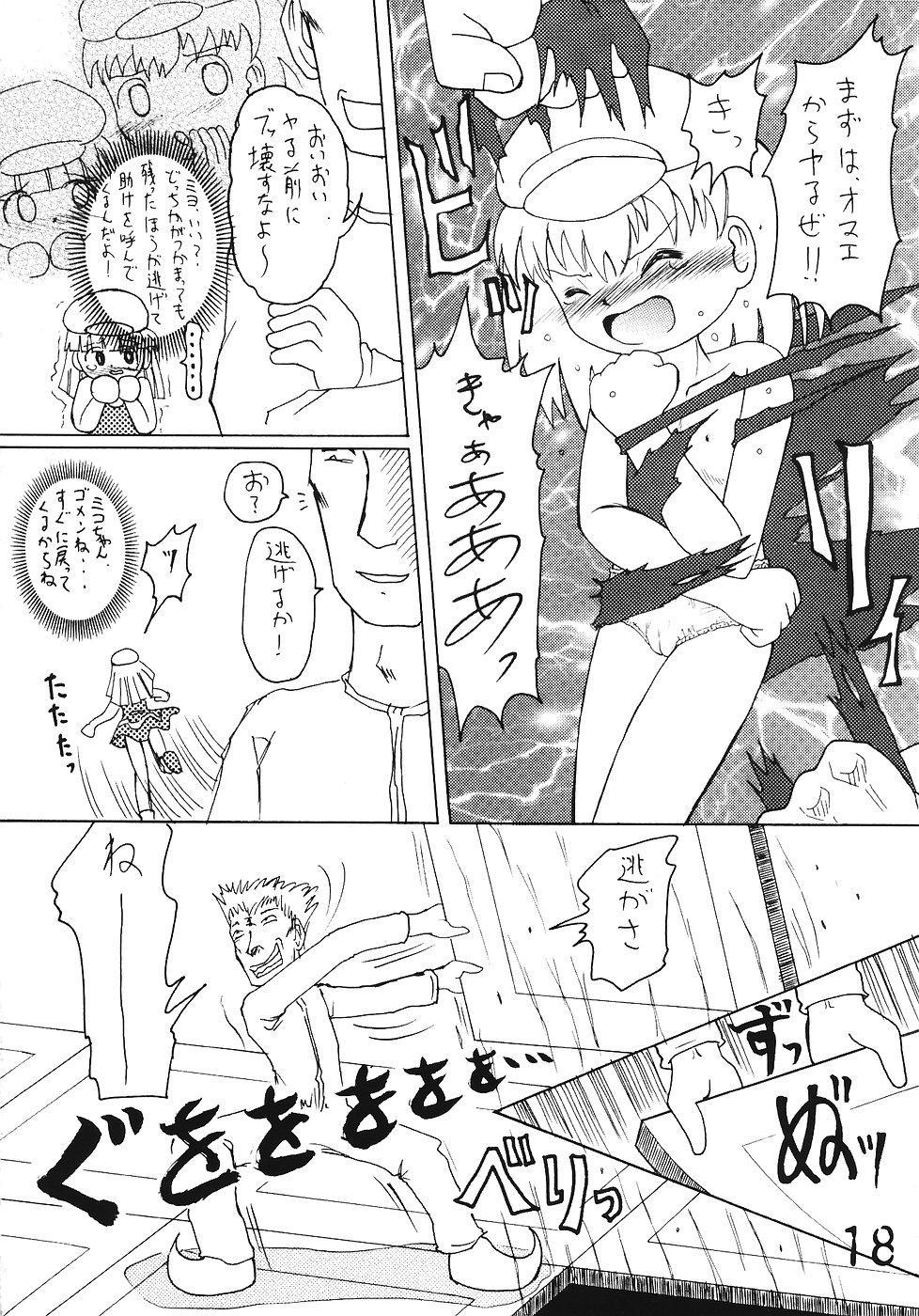 Tsurupeta Kenkyuusho Houkokusho 16