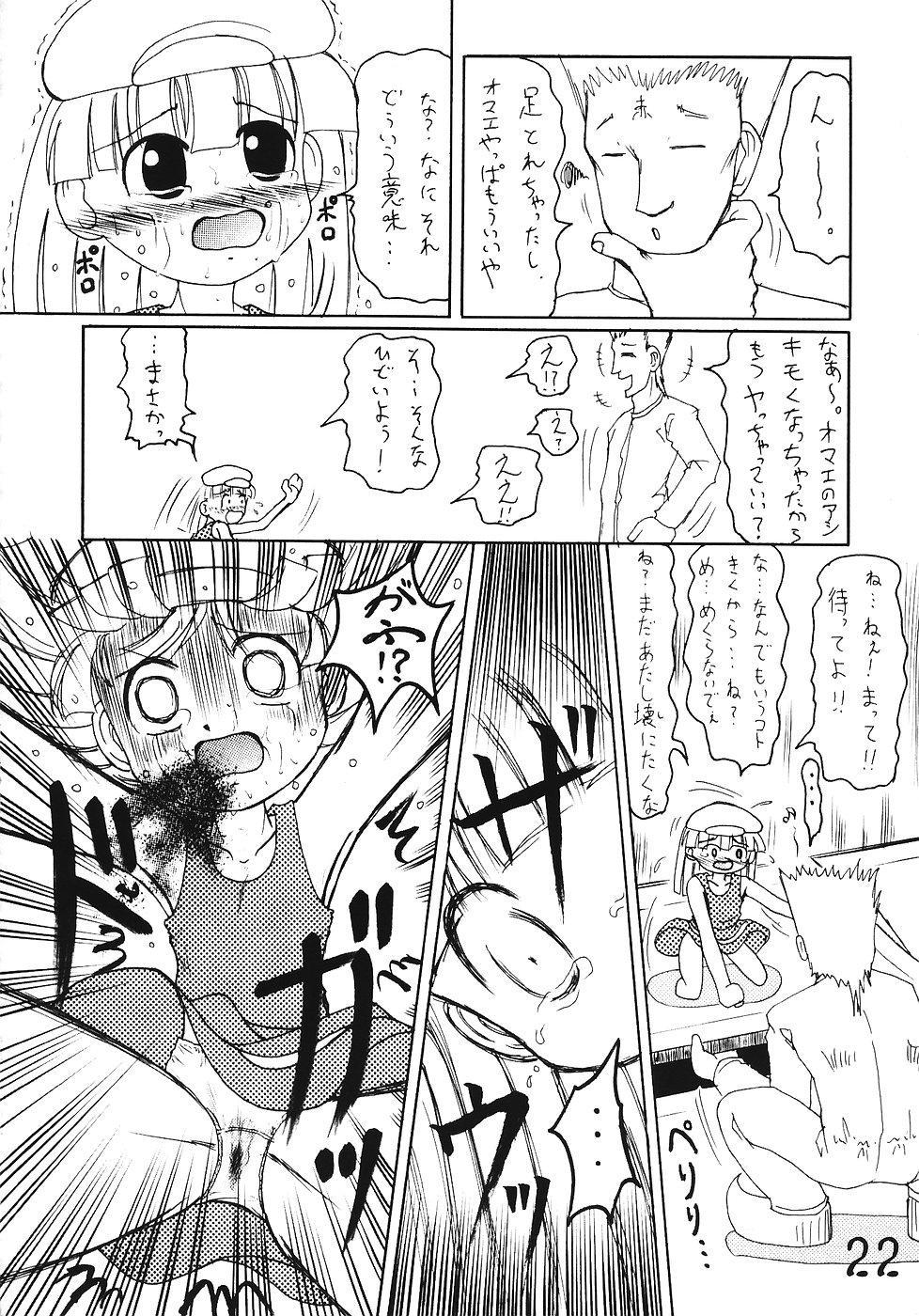 Tsurupeta Kenkyuusho Houkokusho 20