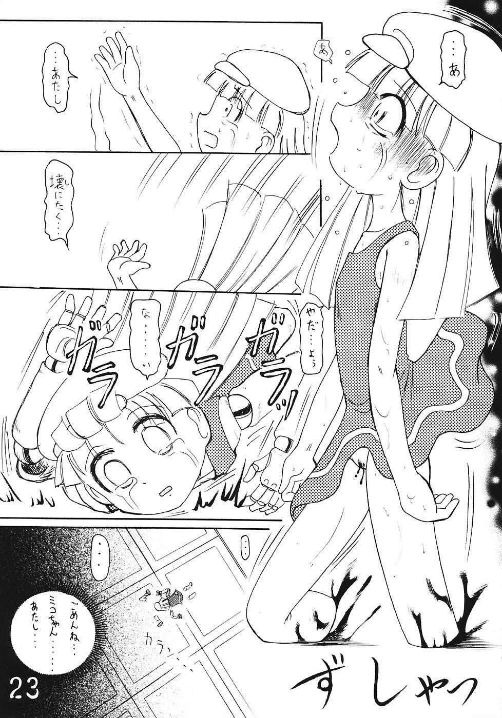 Tsurupeta Kenkyuusho Houkokusho 21