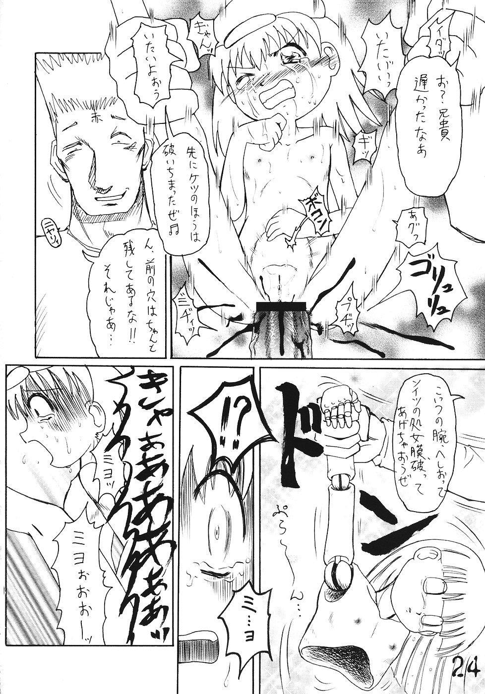 Tsurupeta Kenkyuusho Houkokusho 22