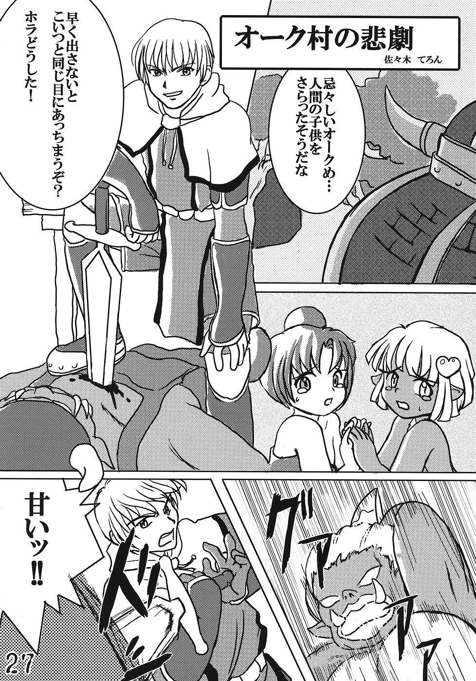 Tsurupeta Kenkyuusho Houkokusho 25