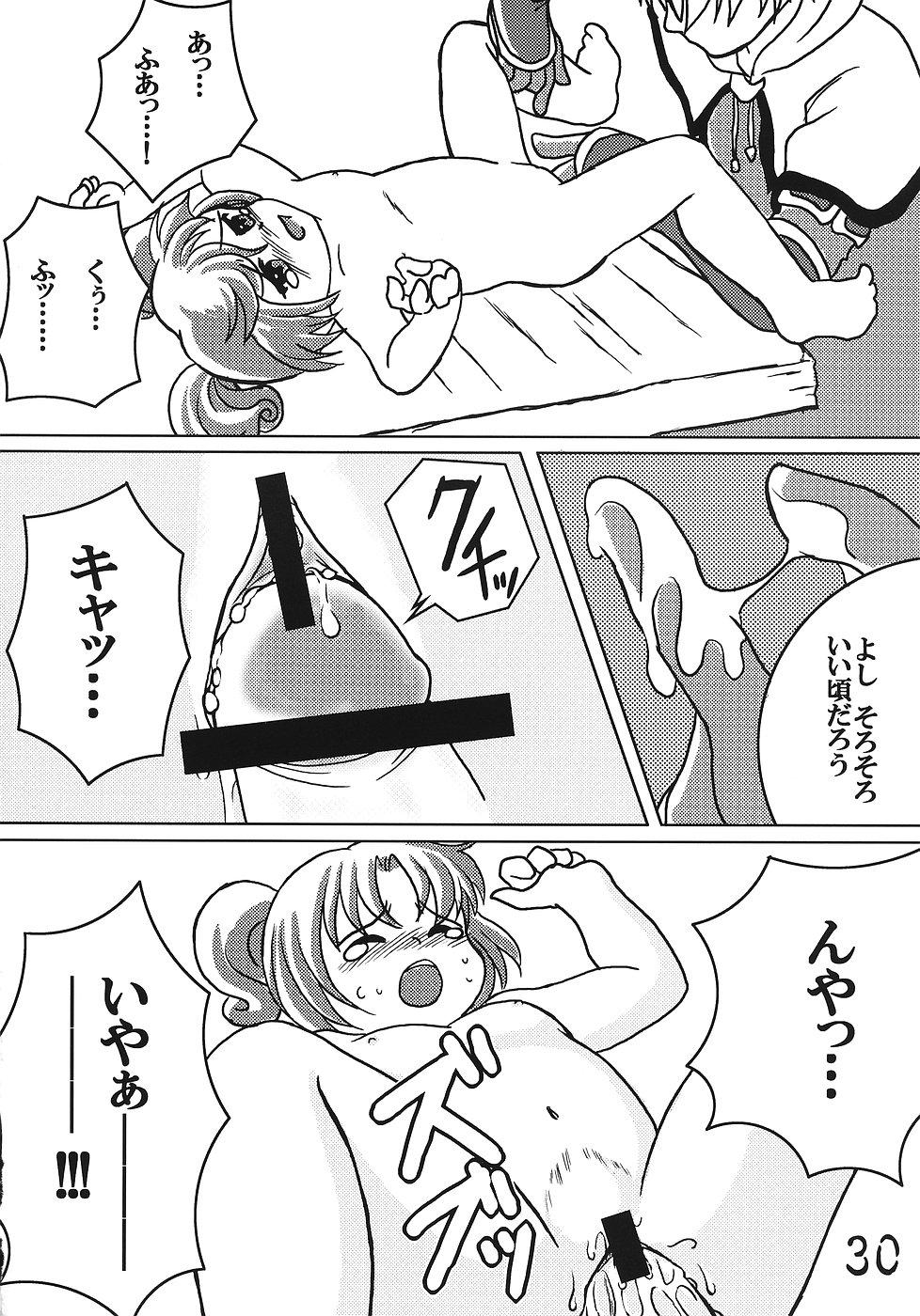 Tsurupeta Kenkyuusho Houkokusho 28