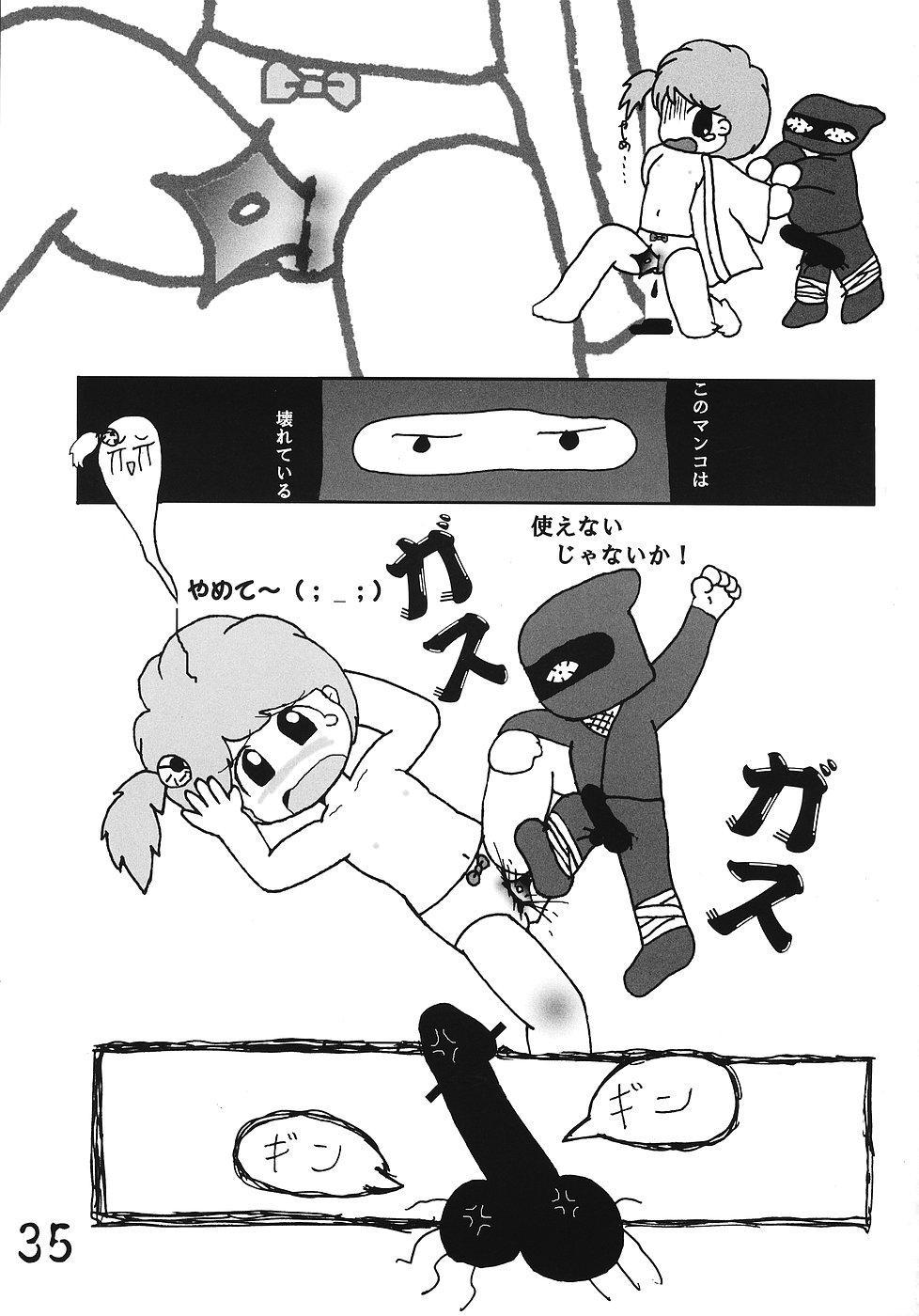 Tsurupeta Kenkyuusho Houkokusho 33