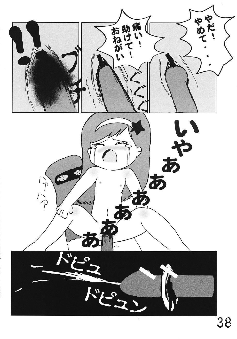 Tsurupeta Kenkyuusho Houkokusho 36