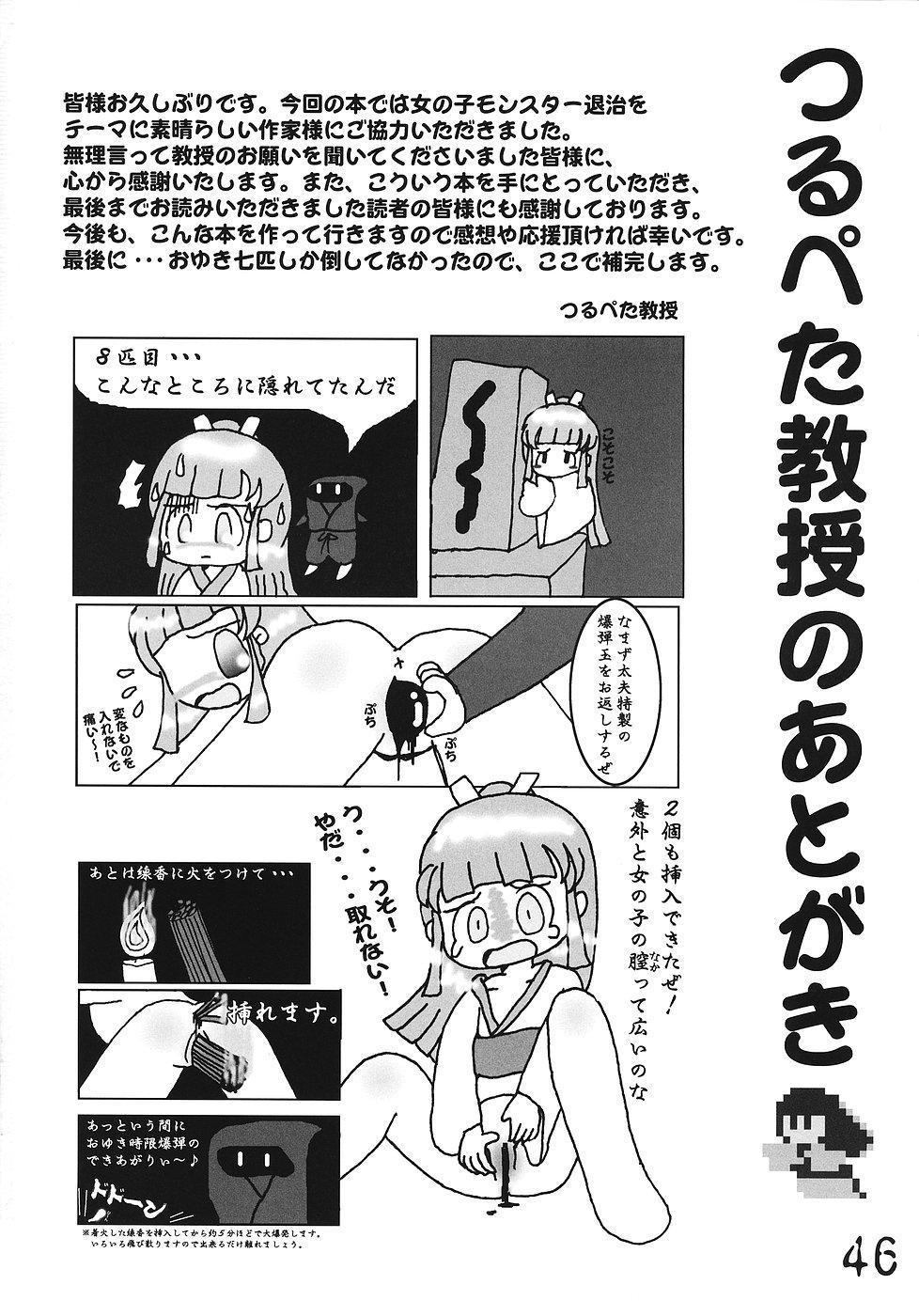 Tsurupeta Kenkyuusho Houkokusho 44