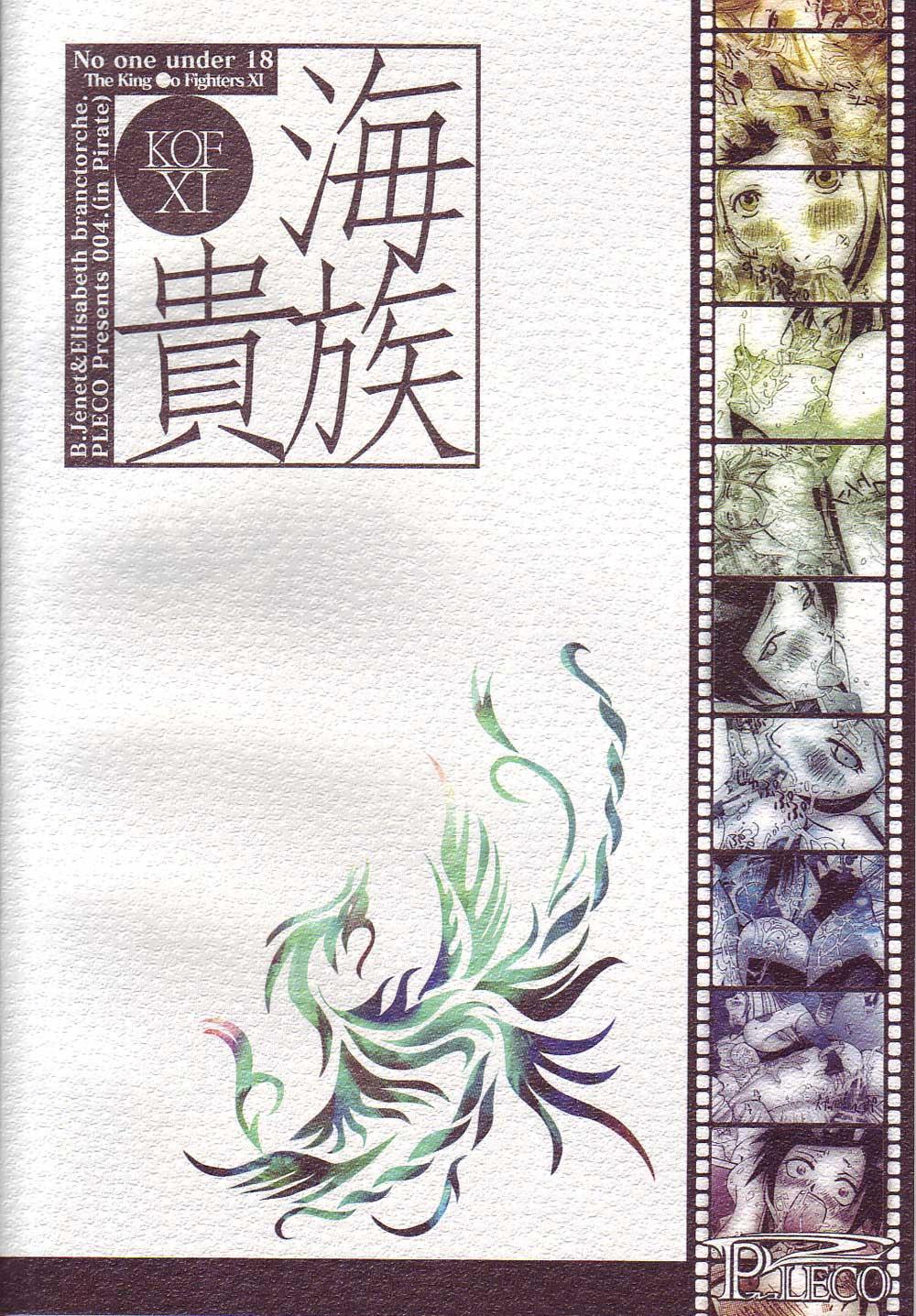 Kaizoku Kizoku 21